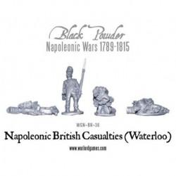 Napoleonic British Casualties Waterloo Blister