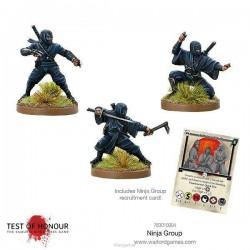 Ninja Blister 1